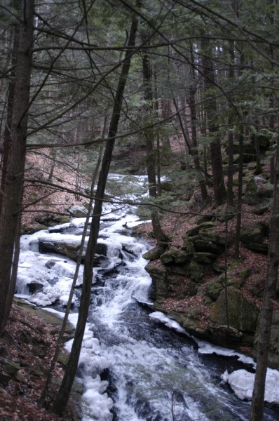 Chesterfield Gorge Trail – Spofford, NH