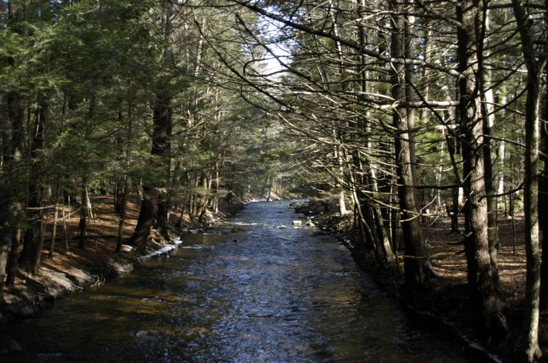 Amethyst Brook Conservation Area – Amherst, MA