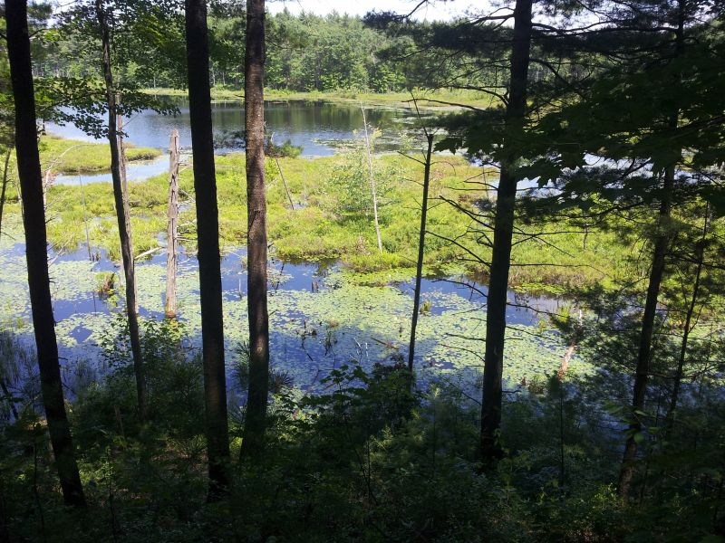Silver Lake State Park – Hollis, NH