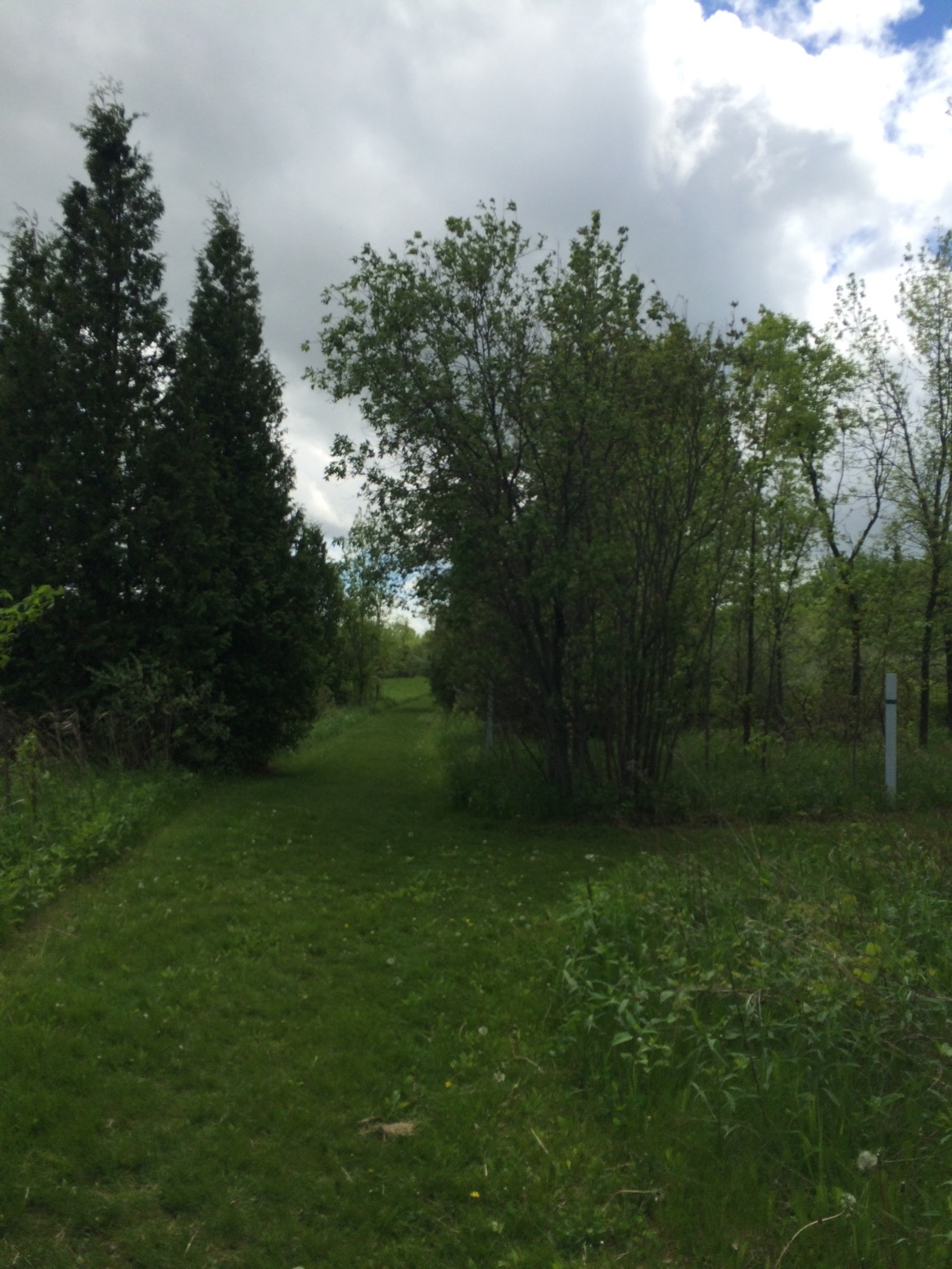 Homestead Hollow County Park – Germantown, WI